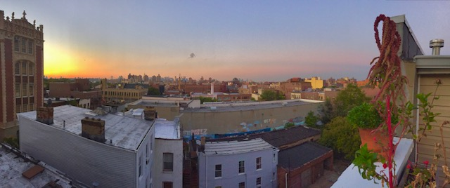 Kent ave rooftop 2