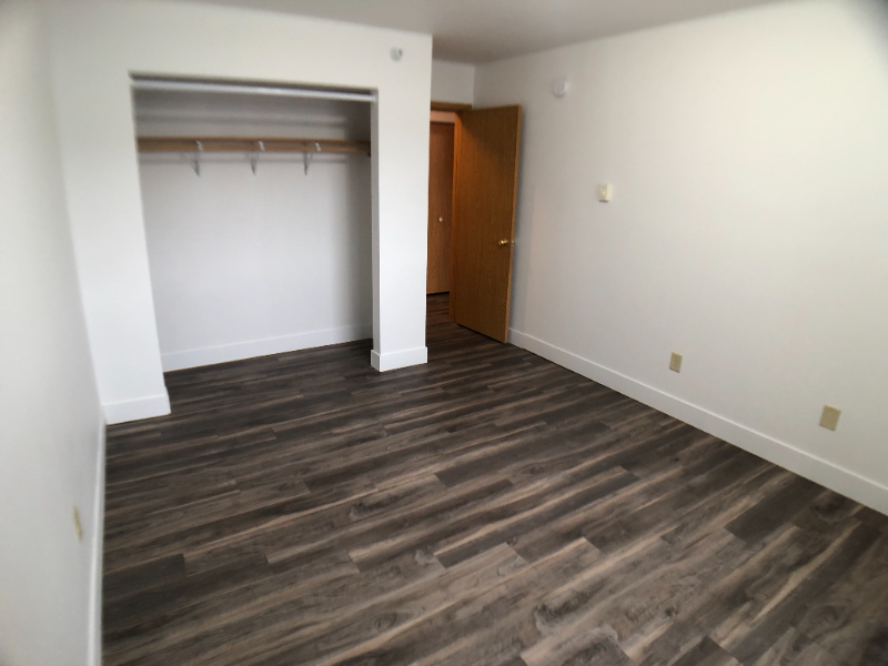 Spacious Garden-level unit with New Flooring